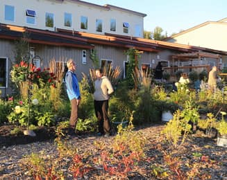 The south side of Ravens' Roost with backyards and edible landscaping
