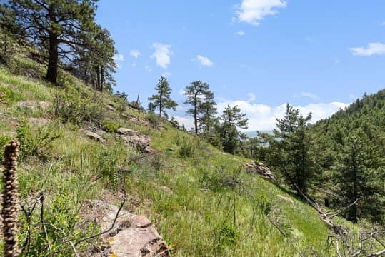 Sky Meadow Ln, Golden, CO 80401, US Photo 33