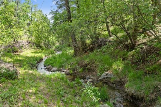 Sky Meadow Ln, Golden, CO 80401, US Photo 21
