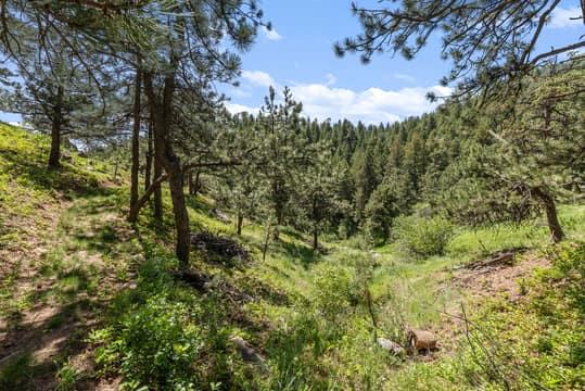 Sky Meadow Ln, Golden, CO 80401, US Photo 31