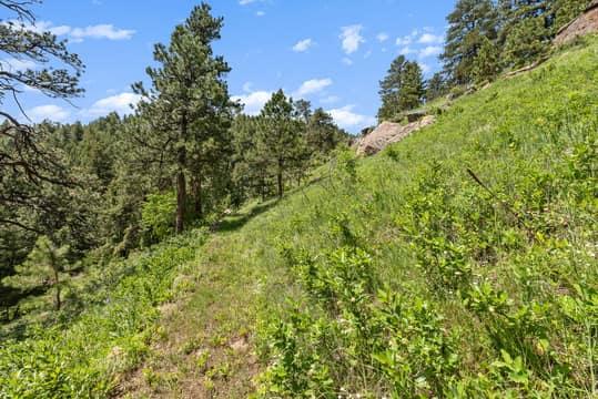 Sky Meadow Ln, Golden, CO 80401, US Photo 24