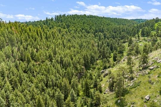 Sky Meadow Ln, Golden, CO 80401, US Photo 2