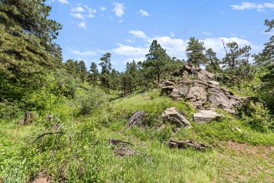 Sky Meadow Ln, Golden, CO 80401, US Photo 29
