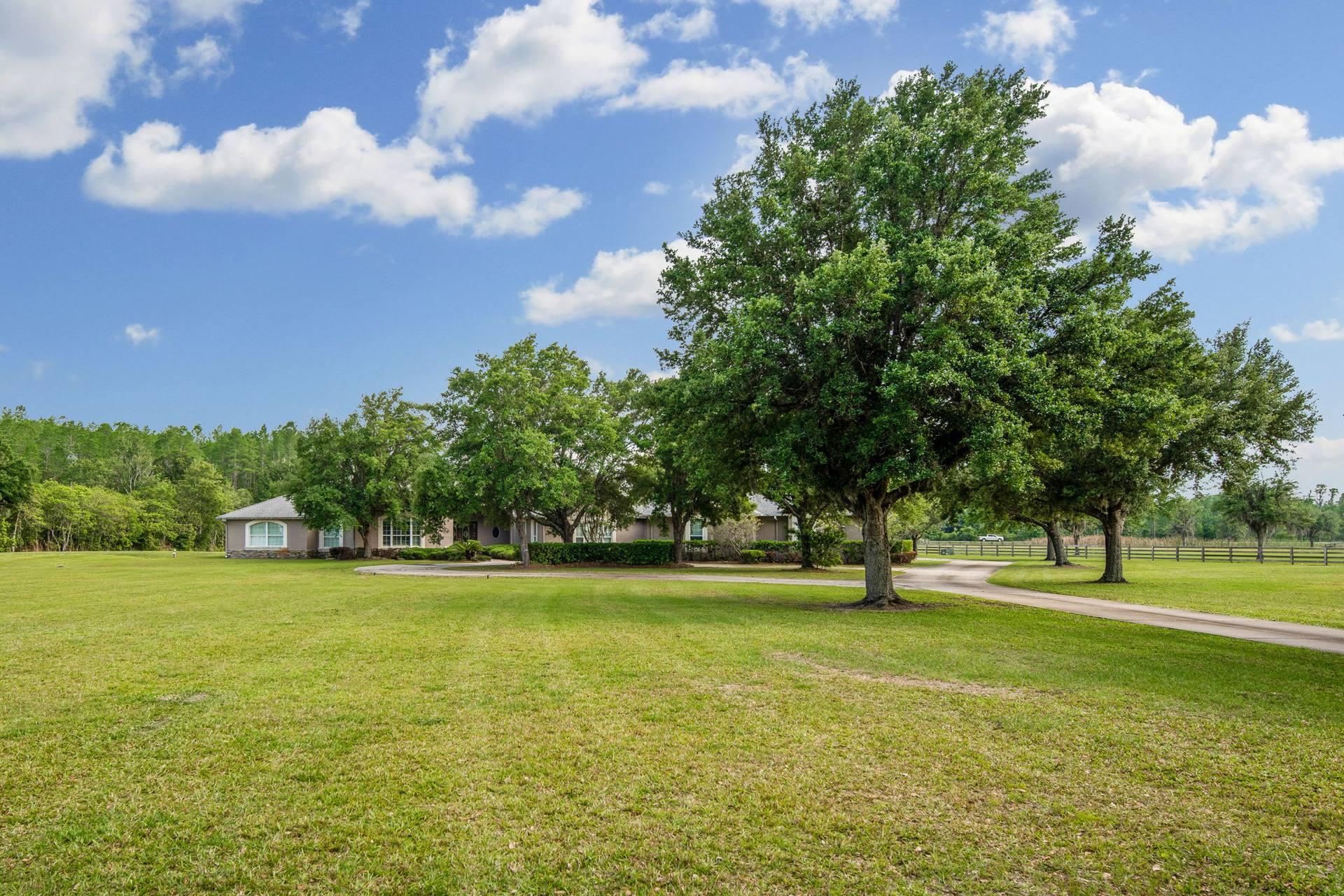 11939 Pasco Trails Blvd, Spring Hill, FL 34610, US