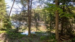 McDougall Rd W, Parry Sound, ON P2A 2W7, Canada Photo 24