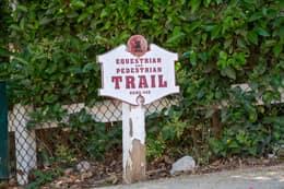 5845 Hilltop Road, Hidden Hills, CA-0342