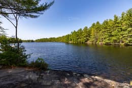 341 Hasketts Dr, Port Severn, ON L0K 1S0, Canada Photo 42