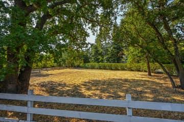 2441 Tice Valley Blvd, Walnut Creek, CA 94595, USA Photo 62