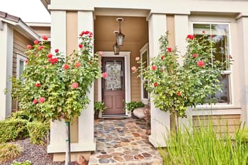 1718 Latour Ave, Brentwood, CA 94513, USA Photo 9