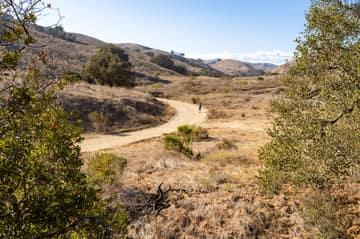 293 Roosevelt Ave, Ventura, CA 93003, USA Photo 59