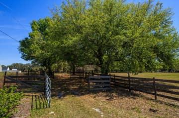 1820 Overlook Dr, Winter Haven, FL 33884, US Photo 47