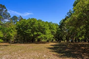 1820 Overlook Dr, Winter Haven, FL 33884, US Photo 20
