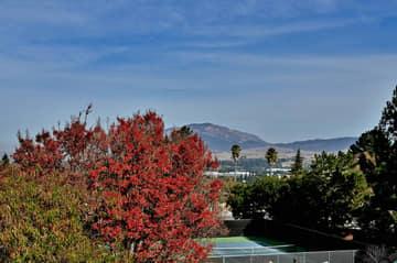 2804 Morgan Dr, San Ramon, CA 94583, USA Photo 41