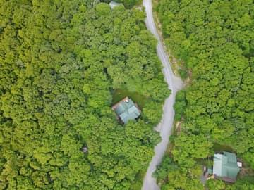 320 Treetop Way, Oakland, MD 21550, USA Photo 57