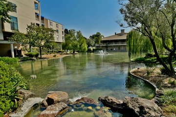 360 N Civic Dr, Walnut Creek, CA 94596, USA Photo 28