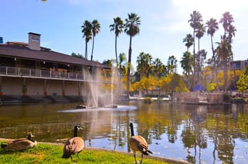 360 N Civic Dr, Walnut Creek, CA 94596, USA Photo 21