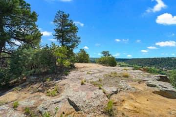 4295 Ridgecrest Dr, Colorado Springs, CO 80918, US Photo 7