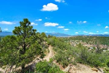 4295 Ridgecrest Dr, Colorado Springs, CO 80918, US Photo 5