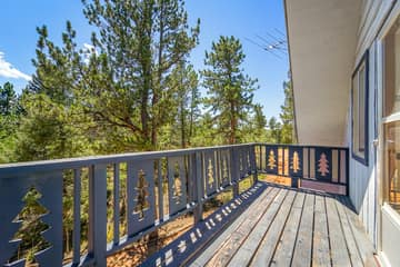 832 Spring Valley Dr, Divide, CO 80814, USA Photo 21